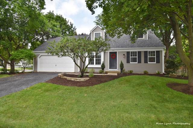 1604 Rita Avenue, St. Charles, IL 60174 (MLS #11155305) :: O'Neil Property Group