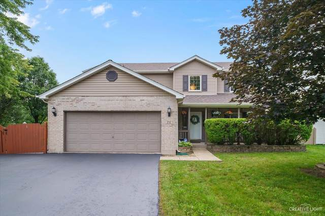 212 Coral Reef Court, Romeoville, IL 60446 (MLS #11155818) :: O'Neil Property Group