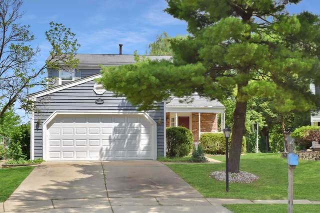 1170 Norman Lane, Roselle, IL 60172 (MLS #11156289) :: Jacqui Miller Homes