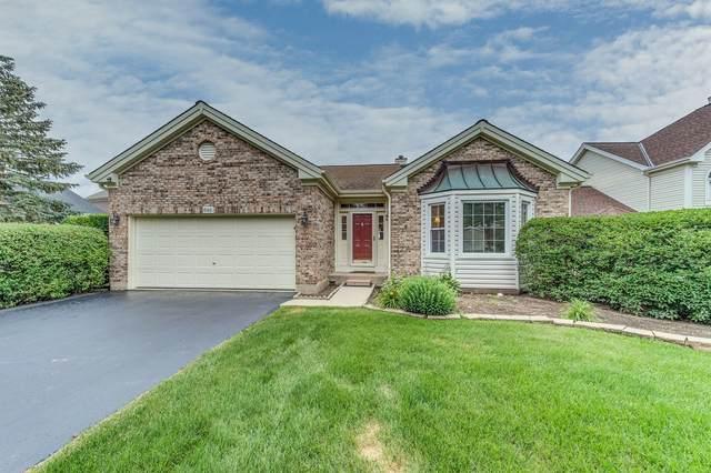 686 Rose Lane, Bartlett, IL 60103 (MLS #11156492) :: Suburban Life Realty