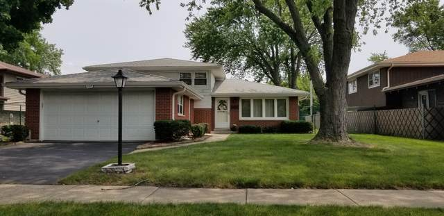 10307 S Terry Drive, Palos Hills, IL 60465 (MLS #11156579) :: The Wexler Group at Keller Williams Preferred Realty