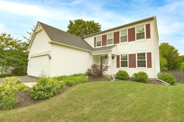 701 Savanna Springs Drive, Lake Villa, IL 60046 (MLS #11156782) :: Jacqui Miller Homes