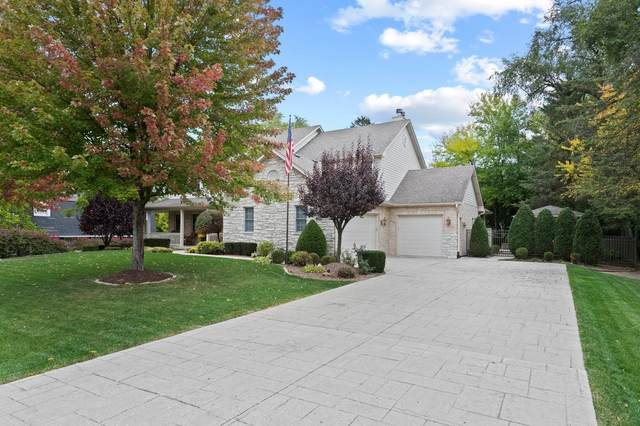 12019 S Harold Avenue, Palos Heights, IL 60463 (MLS #11156986) :: Jacqui Miller Homes