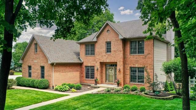 15355 Dan Patch Drive, Plainfield, IL 60544 (MLS #11157677) :: Jacqui Miller Homes
