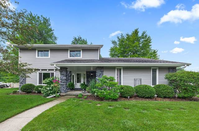 25031 W Willow Drive, Plainfield, IL 60544 (MLS #11157858) :: O'Neil Property Group