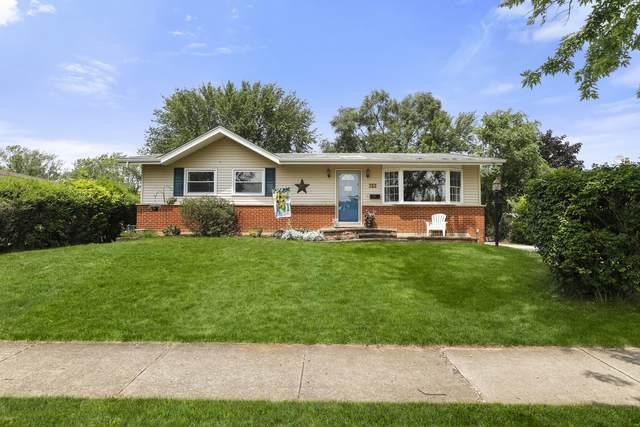 702 E Ironwood Drive, Mount Prospect, IL 60056 (MLS #11158046) :: John Lyons Real Estate
