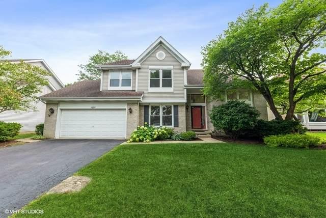 1355 Saint Claire Place, Schaumburg, IL 60173 (MLS #11158274) :: Jacqui Miller Homes