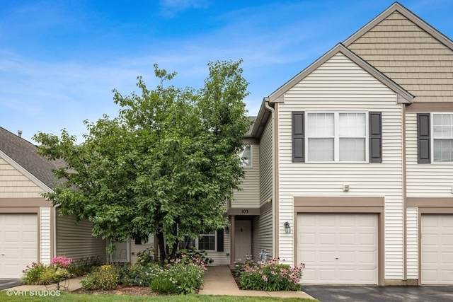 2435 Sheehan Drive #103, Naperville, IL 60564 (MLS #11158300) :: BN Homes Group