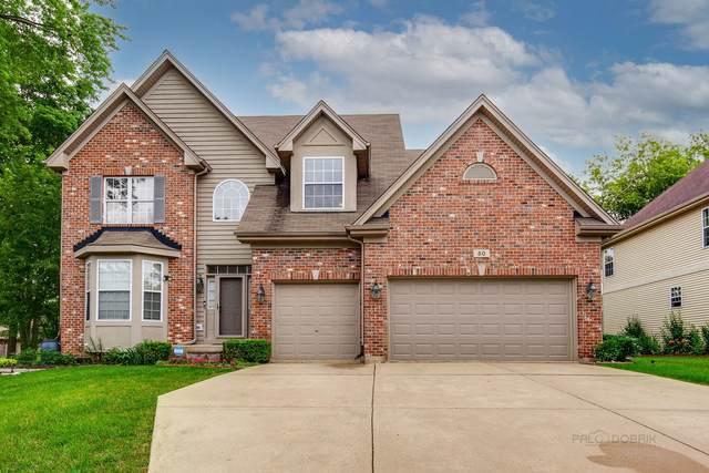 50 E Orchard Lane, Palatine, IL 60067 (MLS #11158504) :: O'Neil Property Group