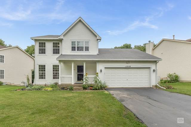 2908 Sun Valley Court, Plainfield, IL 60586 (MLS #11158730) :: O'Neil Property Group
