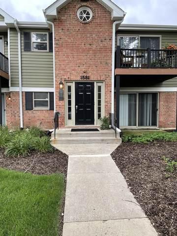 1581 Raymond Drive #101, Naperville, IL 60563 (MLS #11158951) :: The Dena Furlow Team - Keller Williams Realty