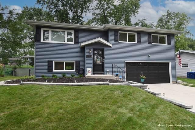 1309 Rita Avenue, St. Charles, IL 60174 (MLS #11159580) :: O'Neil Property Group