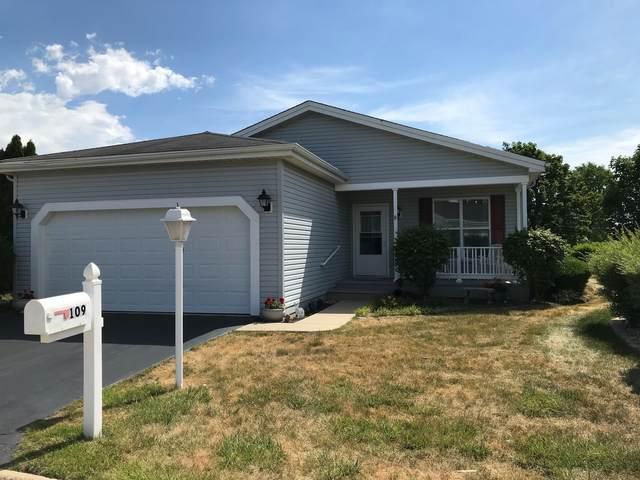 109 Hunter Court, Grayslake, IL 60030 (MLS #11159691) :: O'Neil Property Group
