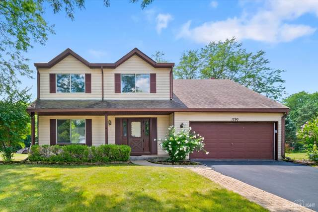 1290 Meyer Court, Naperville, IL 60564 (MLS #11160028) :: The Wexler Group at Keller Williams Preferred Realty