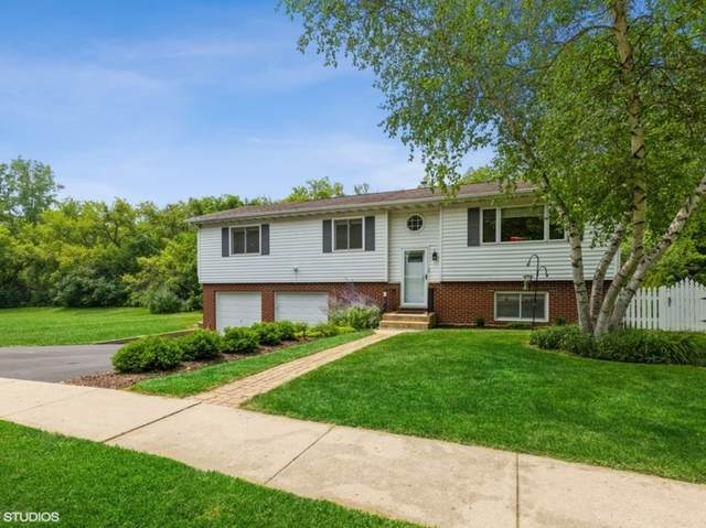 48 Briarwood Circle, Crystal Lake, IL 60014 (MLS #11160200) :: Touchstone Group