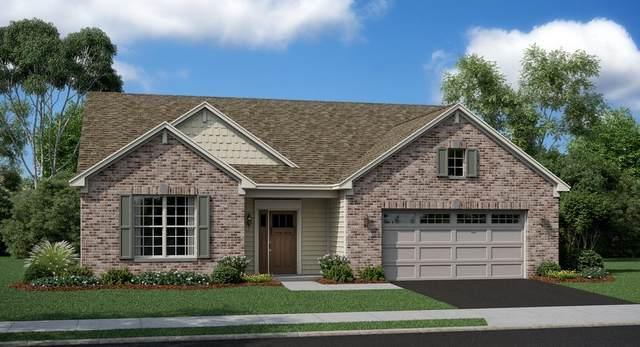 1129 Black Cherry Drive, Crystal Lake, IL 60012 (MLS #11160419) :: The Dena Furlow Team - Keller Williams Realty