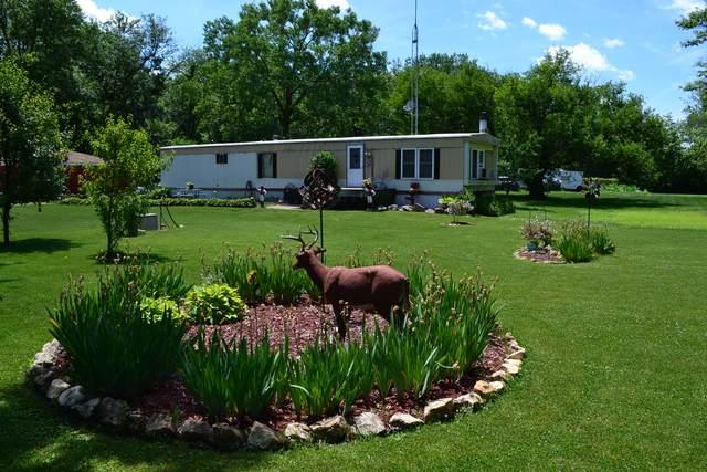 37258 Zilm Road, Wilmington, IL 60481 (MLS #11160536) :: O'Neil Property Group