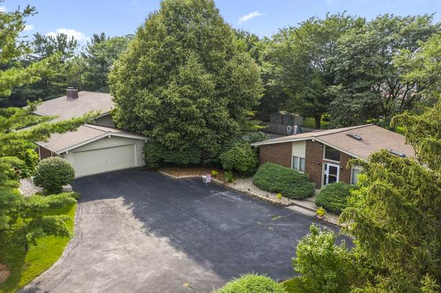 20262 Laporte Meadows Drive, Frankfort, IL 60423 (MLS #11160641) :: The Wexler Group at Keller Williams Preferred Realty