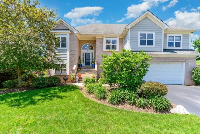76 Burnette Drive, Antioch, IL 60002 (MLS #11160670) :: O'Neil Property Group