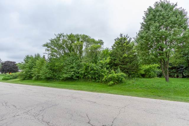 Lot 34 Foley Lane, St. Charles, IL 60175 (MLS #11160762) :: The Wexler Group at Keller Williams Preferred Realty