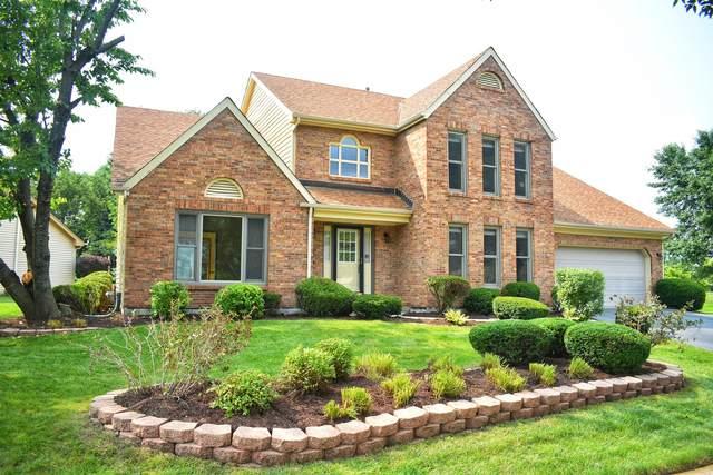 1417 Ginger Lane, Naperville, IL 60565 (MLS #11160987) :: The Dena Furlow Team - Keller Williams Realty
