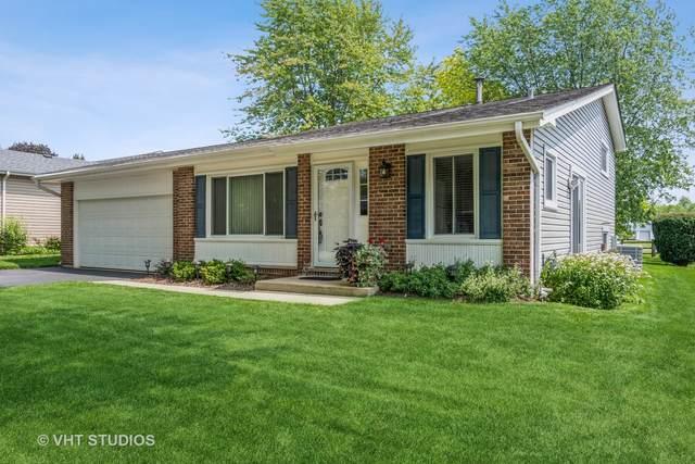 24w615 Springdale Drive, Naperville, IL 60540 (MLS #11161278) :: O'Neil Property Group