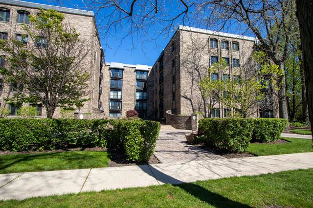 1005 Bonnie Brae Place 3E, River Forest, IL 60305 (MLS #11161290) :: O'Neil Property Group