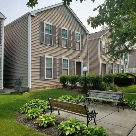 728 Four Seasons Boulevard, Aurora, IL 60504 (MLS #11161422) :: Jacqui Miller Homes