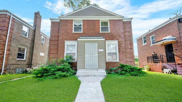 9813 S Hoxie Avenue, Chicago, IL 60617 (MLS #11161547) :: O'Neil Property Group