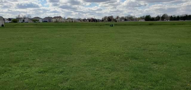 514 Heritage Lane, Plano, IL 60545 (MLS #11161727) :: Suburban Life Realty