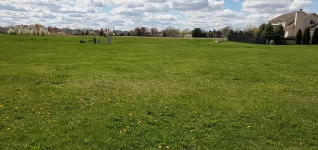 524 Heritage Lane, Plano, IL 60545 (MLS #11161729) :: Suburban Life Realty
