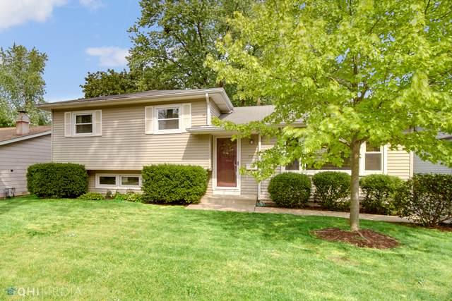 531 Oakwood Drive, Grayslake, IL 60030 (MLS #11161731) :: O'Neil Property Group