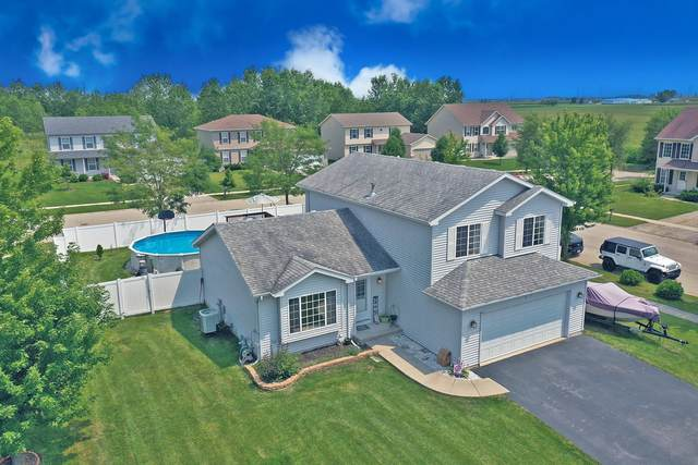 1100 Nikki Court, Joliet, IL 60431 (MLS #11162118) :: BN Homes Group