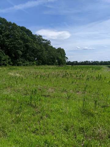 000 N Erickson Road, Morris, IL 60450 (MLS #11162182) :: O'Neil Property Group