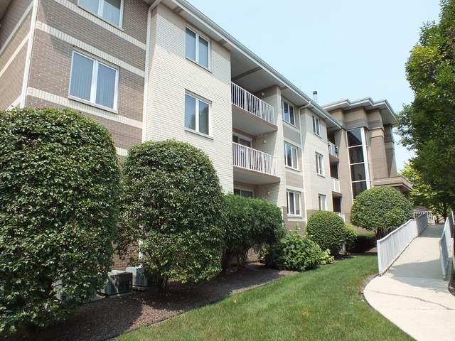 10700 S Washington Street #201, Oak Lawn, IL 60453 (MLS #11162402) :: O'Neil Property Group