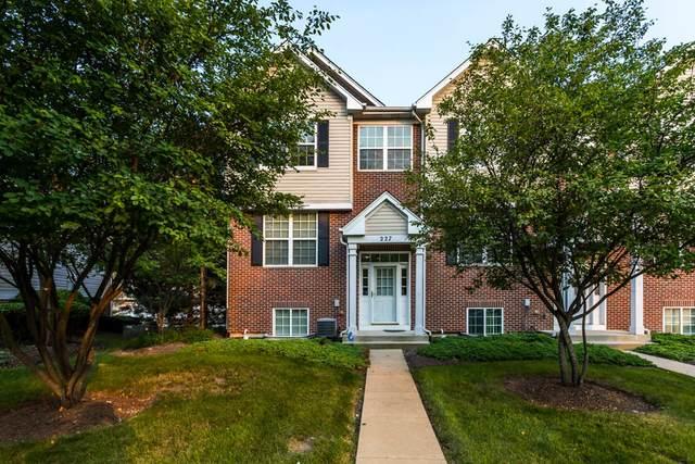 227 S Oak Creek Lane, Romeoville, IL 60446 (MLS #11162751) :: O'Neil Property Group