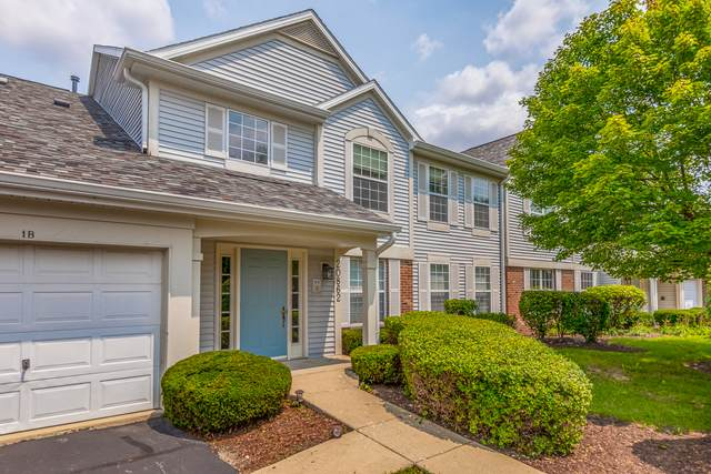 20862 W Torrey Pines 2A, Plainfield, IL 60544 (MLS #11162760) :: The Wexler Group at Keller Williams Preferred Realty
