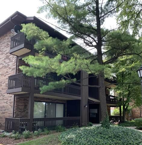 9550 Mason Avenue #3, Oak Lawn, IL 60453 (MLS #11162787) :: O'Neil Property Group