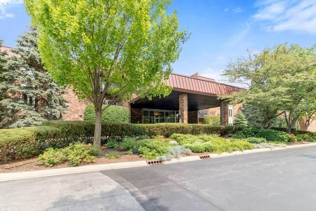 1049 W Ogden Avenue #212, Naperville, IL 60563 (MLS #11162788) :: O'Neil Property Group