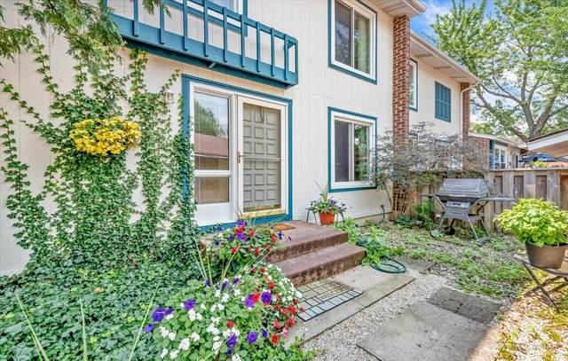290 Bayview Court #290, Bloomingdale, IL 60108 (MLS #11162804) :: RE/MAX IMPACT