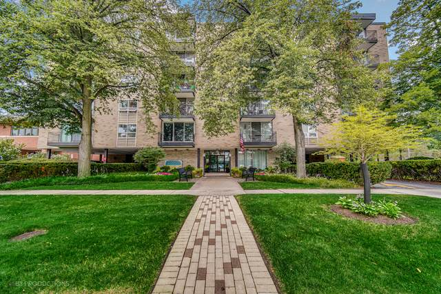424 Park Avenue #305, River Forest, IL 60305 (MLS #11162874) :: O'Neil Property Group