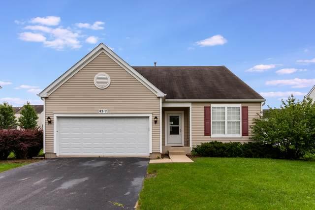 8212 Trumbull Avenue, Joliet, IL 60431 (MLS #11162880) :: O'Neil Property Group