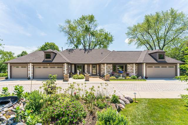 1430 Blackhawk Drive, Schaumburg, IL 60193 (MLS #11162915) :: Suburban Life Realty