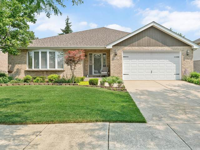59 Deborah Drive, Lemont, IL 60439 (MLS #11162996) :: Suburban Life Realty