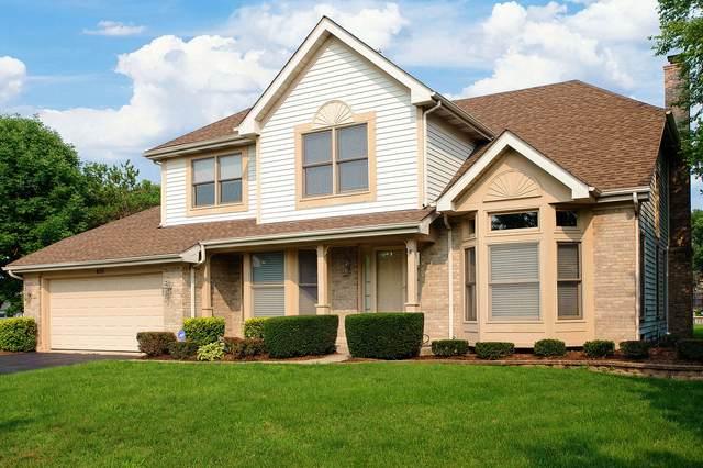 456 Kerri Court, Schaumburg, IL 60173 (MLS #11163443) :: Jacqui Miller Homes