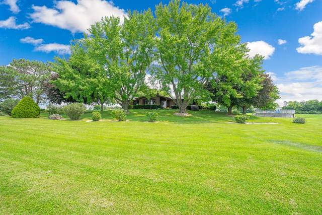 35365 S Old Chicago Road, Wilmington, IL 60481 (MLS #11163514) :: O'Neil Property Group