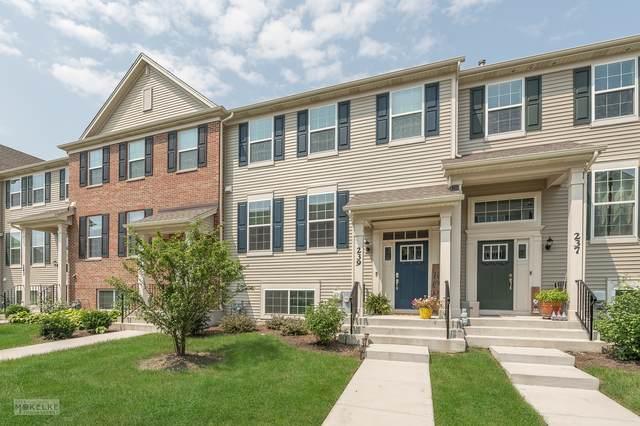 239 Lakeshore Drive, Oswego, IL 60543 (MLS #11163564) :: O'Neil Property Group