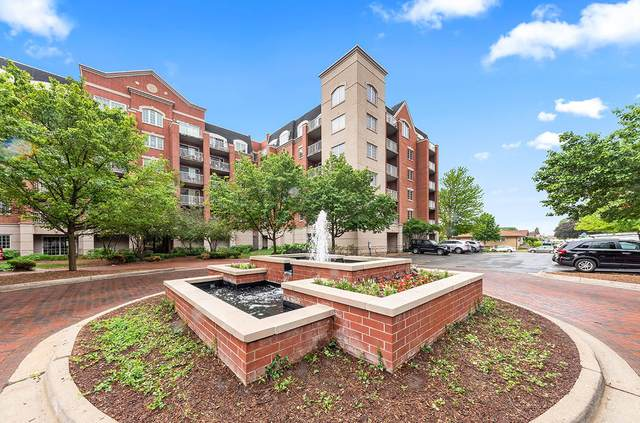 4811 N Olcott Avenue #604, Harwood Heights, IL 60706 (MLS #11163571) :: Suburban Life Realty
