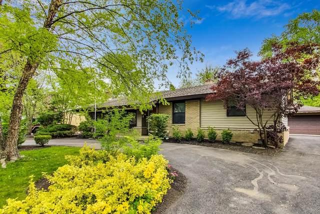 1231 Hemlock Drive, Elk Grove Village, IL 60007 (MLS #11163611) :: O'Neil Property Group