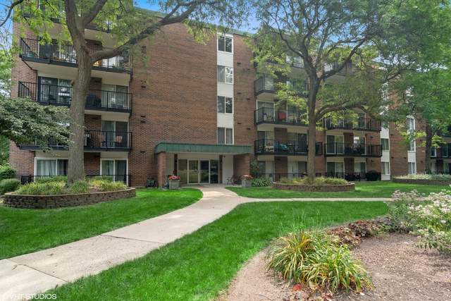 5S040 Pebblewood Lane E503, Naperville, IL 60563 (MLS #11163701) :: The Wexler Group at Keller Williams Preferred Realty